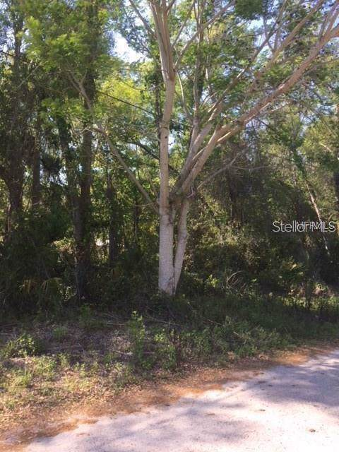 Cook Street, Lake Helen, FL 32744 (MLS #O5834720) :: Team Bohannon Keller Williams, Tampa Properties