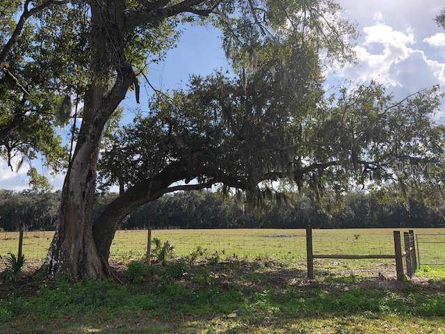 Pine Way Lot 4D Way, Sanford, FL 32773 (MLS #O5836745) :: The Duncan Duo Team