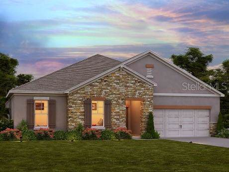 4801 Butler National Drive, Wesley Chapel, FL 33543 (MLS #O5837625) :: The Light Team