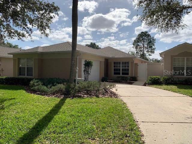 2131 Braxton Street, Clermont, FL 34711 (MLS #O5838304) :: Dalton Wade Real Estate Group