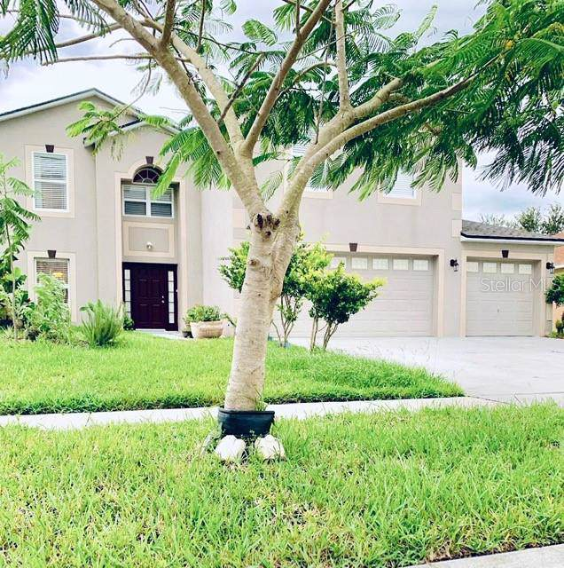 5289 Sunset Canyon Drive, Kissimmee, FL 34758 (MLS #O5838787) :: Team Borham at Keller Williams Realty
