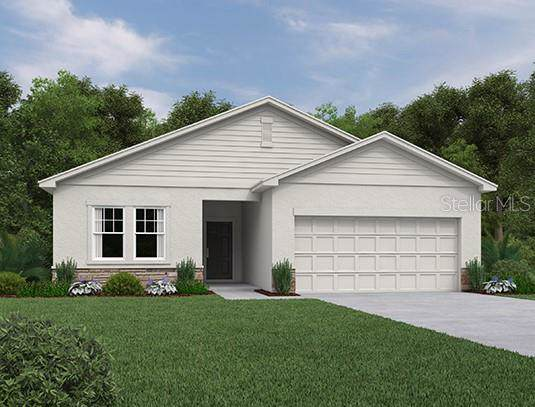 2925 Deerberry Lane, Clermont, FL 34714 (MLS #O5839171) :: Alpha Equity Team