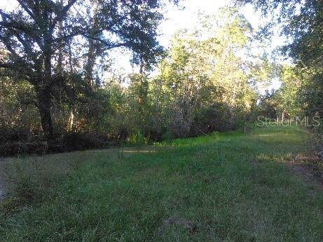 Jones Road, Saint Cloud, FL 34771 (MLS #O5840130) :: Zarghami Group