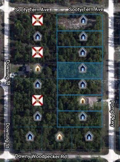 16093 Pomp Parkway, Weeki Wachee, FL 34614 (MLS #O5844123) :: GO Realty