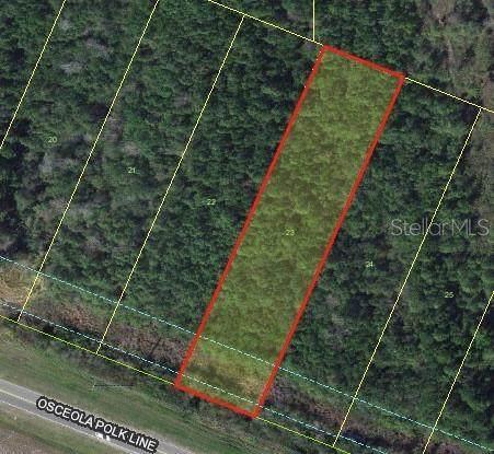 Osceola Polk Line Rd, Davenport, FL 33896 (MLS #O5848100) :: Rabell Realty Group