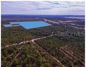 International Drive, Orlando, FL 32821 (MLS #O5861693) :: Rabell Realty Group