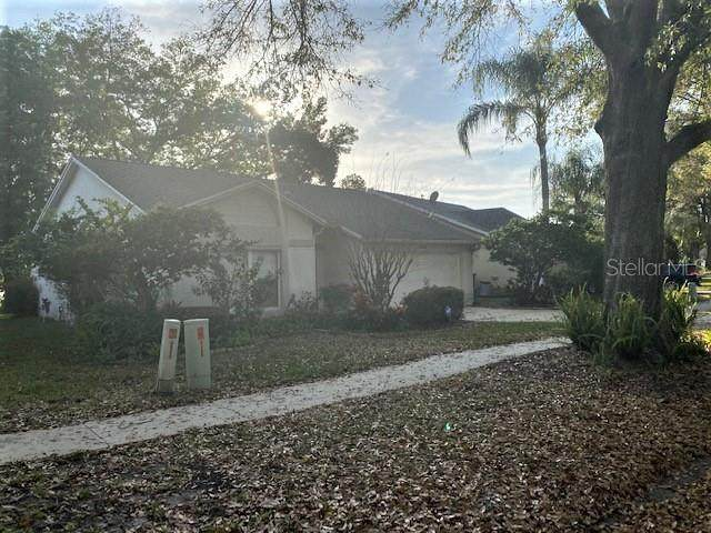 Address Not Published, Apopka, FL 32703 (MLS #O5862663) :: The Duncan Duo Team