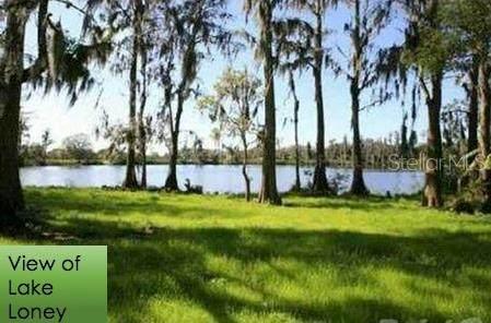 18710 Hillstone Drive, Odessa, FL 33556 (MLS #O5863131) :: The Duncan Duo Team