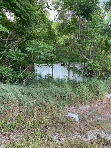 134 E 11TH Street, Apopka, FL 32703 (MLS #O5866144) :: Florida Real Estate Sellers at Keller Williams Realty