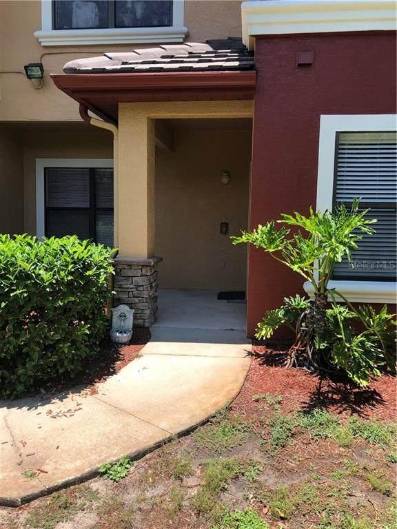 2272 Chianti Place 4-0410, Palm Harbor, FL 34683 (MLS #O5867316) :: Delgado Home Team at Keller Williams