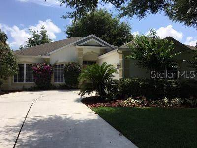 2335 Addison Avenue, Clermont, FL 34711 (MLS #O5867463) :: Rabell Realty Group