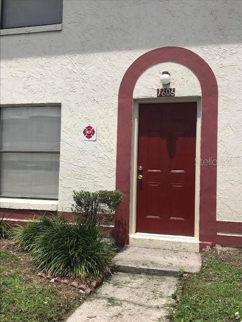 1606 Long Ridge Court #275, Orlando, FL 32807 (MLS #O5869166) :: Armel Real Estate