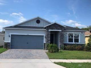 6408 Domenico Court, Groveland, FL 34736 (MLS #O5871566) :: Team Bohannon Keller Williams, Tampa Properties