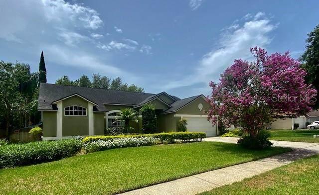 2429 Greywall Avenue, Ocoee, FL 34761 (MLS #O5874088) :: Bustamante Real Estate