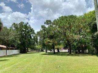 22ND Avenue S, St Petersburg, FL 33705 (MLS #O5874171) :: Team Buky