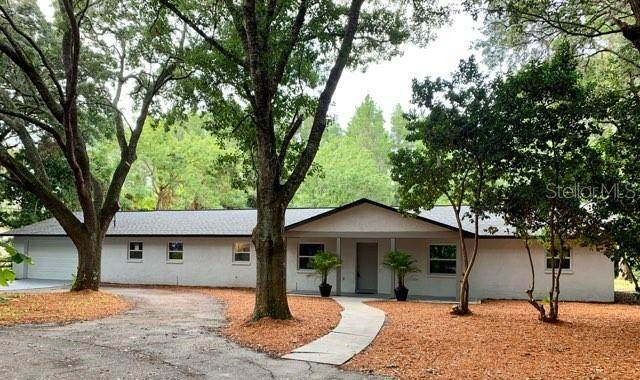 10127 Lakeview Drive, New Port Richey, FL 34654 (MLS #O5875671) :: Cartwright Realty