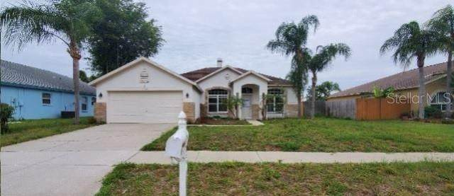 22327 Willow Lakes Drive, Lutz, FL 33549 (MLS #O5876209) :: Griffin Group
