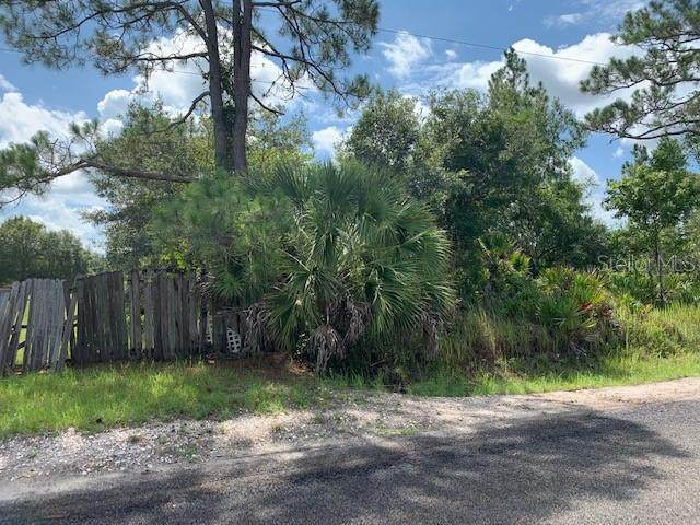 Magnolia Road, Saint Cloud, FL 34773 (MLS #O5876411) :: Team Bohannon Keller Williams, Tampa Properties
