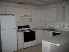 2620 Icabod Court, Leesburg, FL 34748 (MLS #O5879089) :: Team Bohannon Keller Williams, Tampa Properties