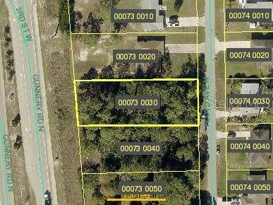 204 Gunnery Road N, Lehigh Acres, FL 33971 (MLS #O5880036) :: Lockhart & Walseth Team, Realtors