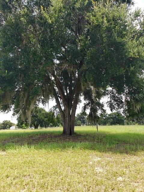 Cemetery Road, Geneva, FL 32732 (MLS #O5881062) :: The Duncan Duo Team