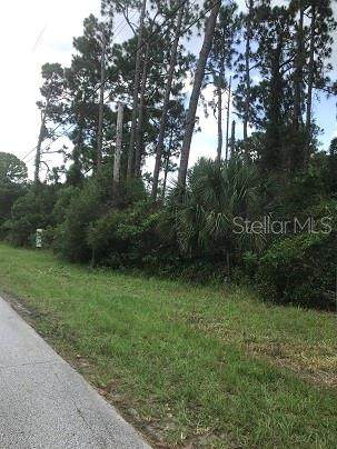 Canal Road, Edgewater, FL 32141 (MLS #O5882596) :: Cartwright Realty