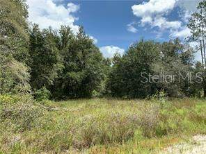 Oil Well Road, Clermont, FL 34714 (MLS #O5884675) :: Rabell Realty Group
