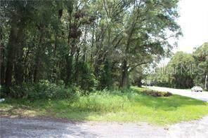 25900 Sorrento Avenue, Mount Plymouth, FL 32776 (MLS #O5889484) :: Everlane Realty