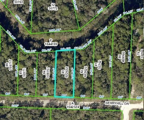 34338 Berryhill Drive, Webster, FL 33597 (MLS #O5891168) :: Zarghami Group