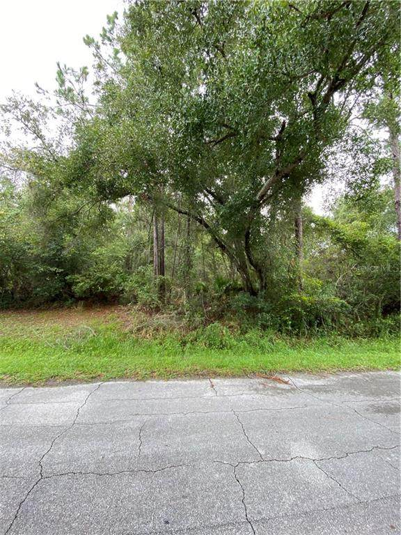 264 Bridle Path Lane, Ormond Beach, FL 32174 (MLS #O5891793) :: Florida Life Real Estate Group