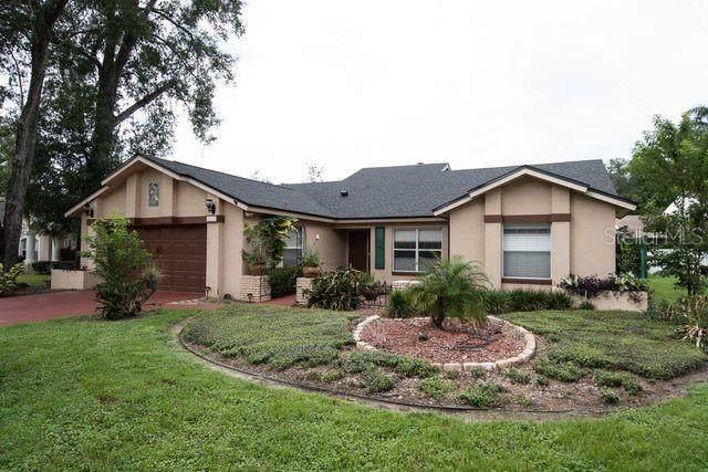 2225 Lake Francis Drive, Apopka, FL 32712 (MLS #O5892730) :: RE/MAX Premier Properties