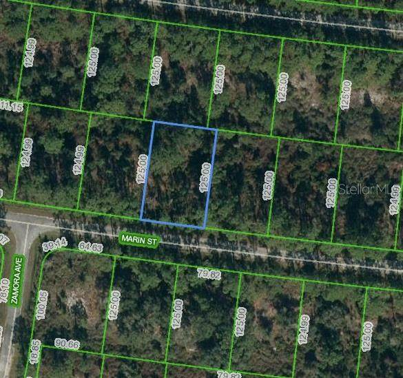 8024 Marin Street, Sebring, FL 33872 (MLS #O5893428) :: KELLER WILLIAMS ELITE PARTNERS IV REALTY