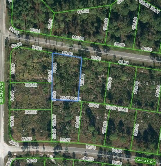 8225 Domenico Street, Sebring, FL 33872 (MLS #O5893437) :: KELLER WILLIAMS ELITE PARTNERS IV REALTY