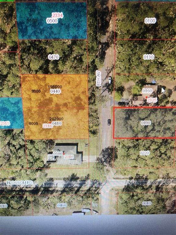 8TH Avenue, Deland, FL 32724 (MLS #O5893688) :: Alpha Equity Team