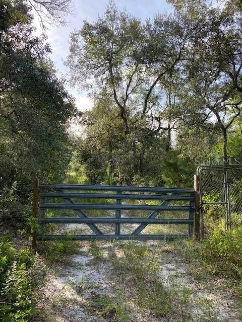 43245 Cooter Pond Road, Deland, FL 32720 (MLS #O5894214) :: Armel Real Estate