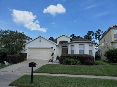 436 Higher Combe Drive, Davenport, FL 33897 (MLS #O5894901) :: The Duncan Duo Team