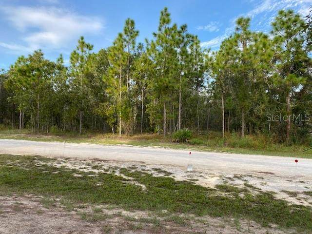 13481 Grebe Road, Weeki Wachee, FL 34614 (MLS #O5895676) :: Team Buky