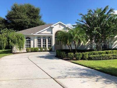 2336 Hampstead Avenue, Clermont, FL 34711 (MLS #O5895810) :: Premier Home Experts