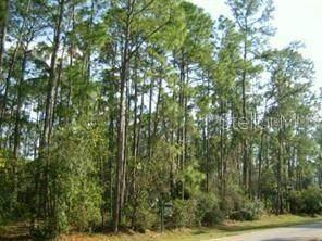 Storys Ford Road, Orlando, FL 32832 (MLS #O5896123) :: Tuscawilla Realty, Inc