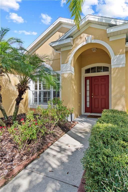17859 Olive Oak Way, Orlando, FL 32820 (MLS #O5896292) :: BuySellLiveFlorida.com