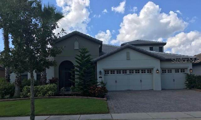 3802 Shoreside Drive, Kissimmee, FL 34746 (MLS #O5900170) :: Your Florida House Team