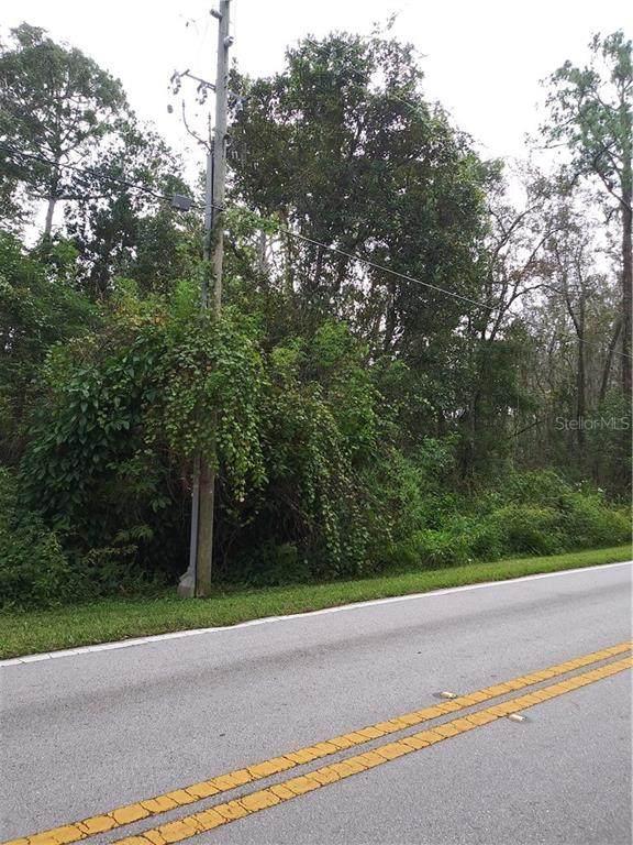 12995 Reaves Road, Winter Garden, FL 34787 (MLS #O5900961) :: Real Estate Chicks