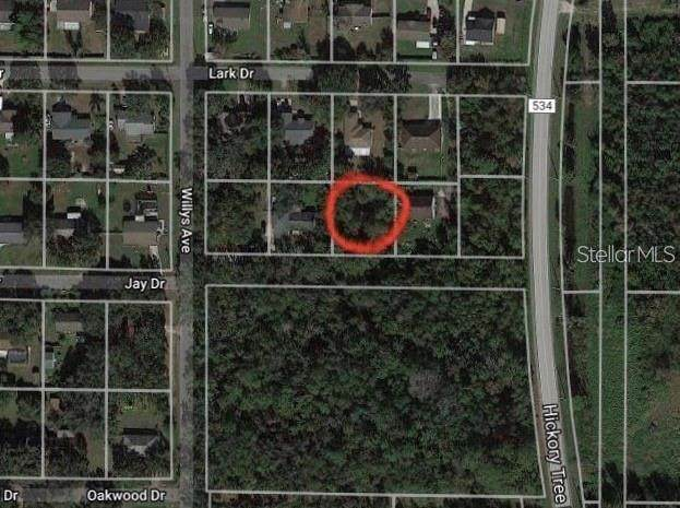 Jay Drive, Saint Cloud, FL 34772 (MLS #O5901655) :: Griffin Group