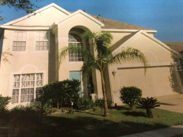 10528 Cherry Oak Circle, Orlando, FL 32817 (MLS #O5901819) :: Baird Realty Group