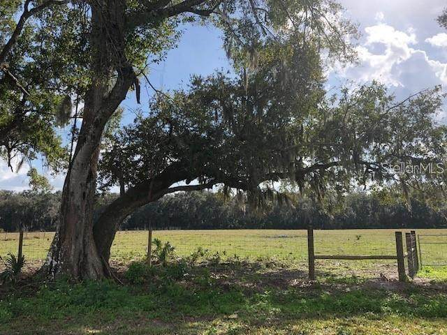 Pine Way Lot 4N Way, Sanford, FL 32773 (MLS #O5902302) :: Carmena and Associates Realty Group