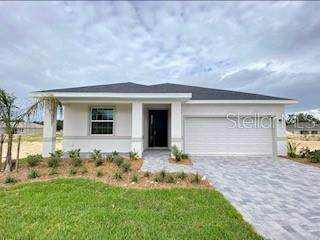 293 Golden Sands Circle, Davenport, FL 33837 (MLS #O5902921) :: Bridge Realty Group