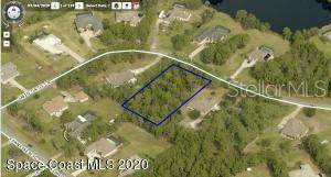 3090 Green Turtle Circle, Mims, FL 32754 (MLS #O5903637) :: Everlane Realty