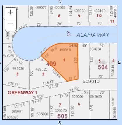 1244 Alafia Way, Poinciana, FL 34759 (MLS #O5905509) :: Cartwright Realty