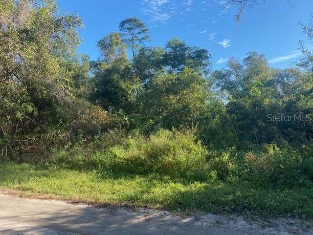 909 Juniper Drive, Christmas, FL 32709 (MLS #O5906377) :: Delgado Home Team at Keller Williams