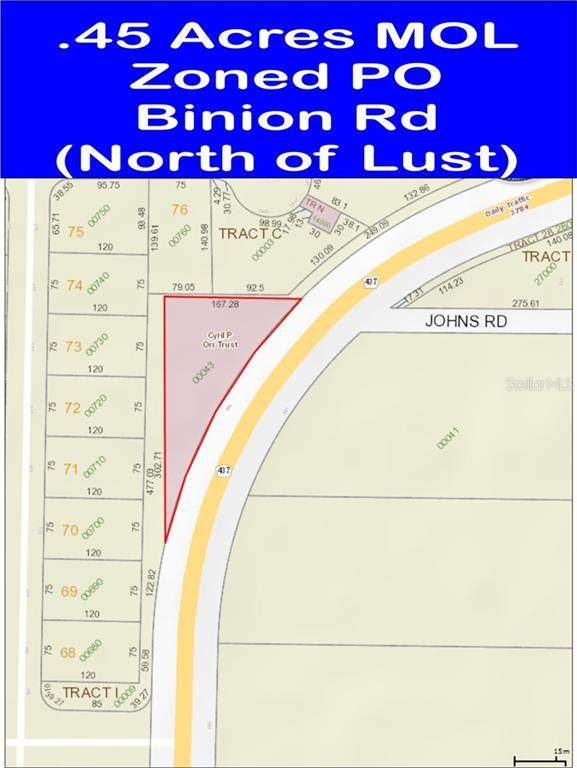 580 S Binion Road, Apopka, FL 32703 (MLS #O5908575) :: Expert Advisors Group